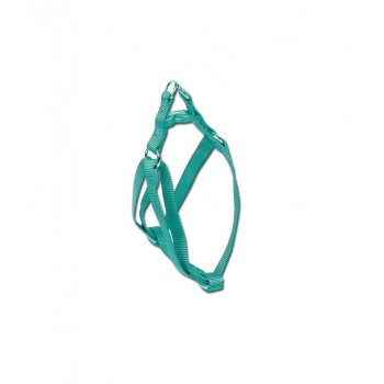 Arnes nylon verde azulado...