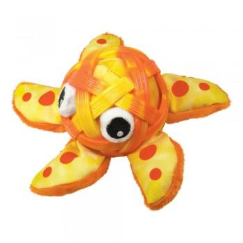 Estrella de mar Shells de Kong